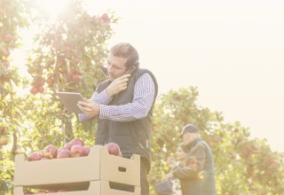 Employee in apple orchard on tablet calling company via customizable unified communications tool