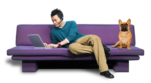 man with dog on purple couch wearing headset using laptop